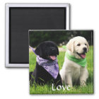 Love Labrador Retriever Puppies Fridge Magnet