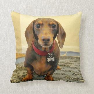 LOVE & LICKS Pluto at home baby blue Cushion