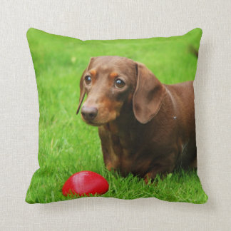 LOVE & LICKS Pluto grass green Cushion
