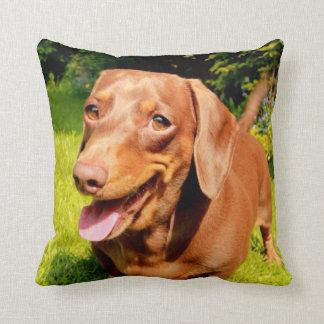 LOVE & LICKS Pluto smily forrest Cushion