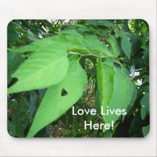 love lives here Mousepad