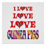 Love Love Guinea Pigs Posters
