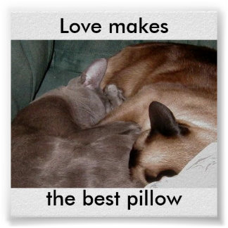 Love makesthe best pillow poster