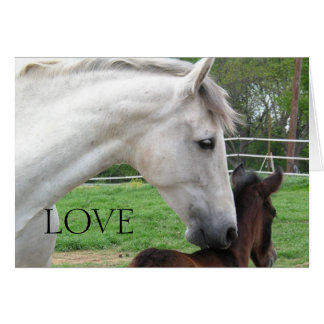 LOVE MARE AND FOAL CARD