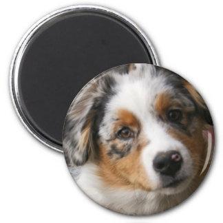 Love my Aussie 6 Cm Round Magnet