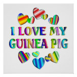 Love My Guinea Pig Poster