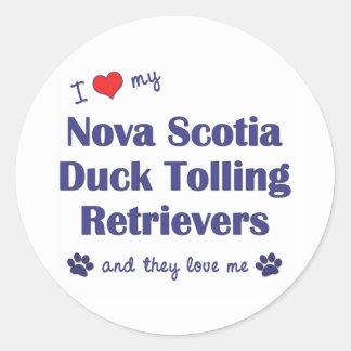 Love My Nova Scotia Duck Tolling Retrievers (They) Classic Round Sticker