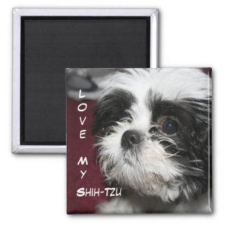 Love My Shih-Tzu Square Magnet