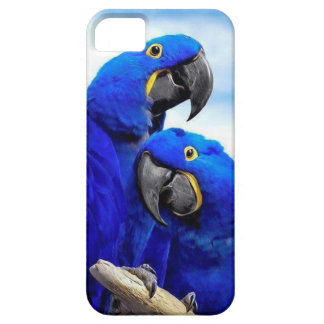 Love parrots iPhone 5 covers