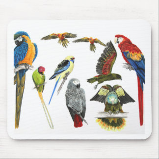 love parrots love these the 2nd in the series mouse mat