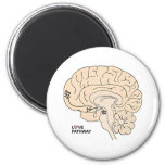 Love Pathway: Love in the Brain Refrigerator Magnets