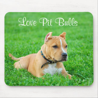 Love Pit Bulls  Mousepad