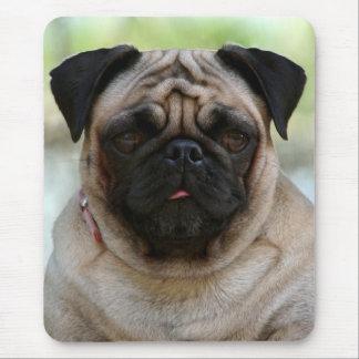Love Pug Puppy Dog Portrait Mousepad