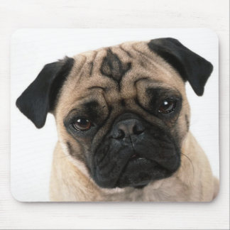 Love Pug Puppy Dog with Heart  Mousepad