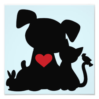 Love Puppy and Kitten Silhouette Blue Photograph