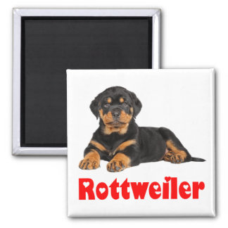 Love Rottweiler Brown & Black Puppy Dog Cartoon Magnet