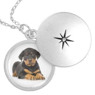 Love Rottweiler Puppy Dog Pendant Necklace