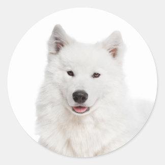 Love Samoyed Puppy Dog Sticker / Seal