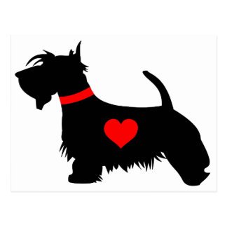 Love scottie dog postcard