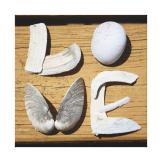 LOVE Sea Shell Canvas Print