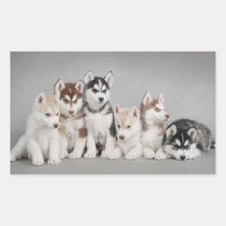 Love Siberian Huskies Rectangular Sticker