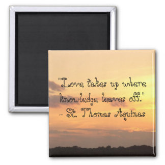 """Love takes up where knowledge leaves off."""" Magnet"""