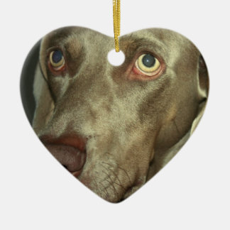 Love Weimaraner  Ornament