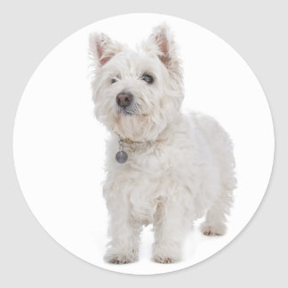 Love West Highland Terrier Puppy Dog Sticker Seal