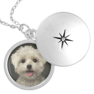Love White Maltese Puppy Dog Pendant Necklace