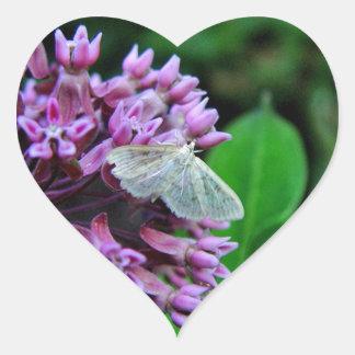 Love Wildlife Stickers - Moth on Milkweed