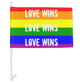 Love Wins Love Wins Love Wins Car Flag