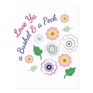 Love Ya A Bushel Postcard
