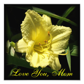 Love You Mom Yellow Daylily Photo Print