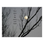 Love you to the moon and back, 16 x 12 poster