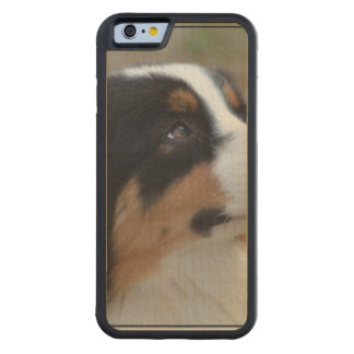 Loveable Australian Shepherd Carved Maple iPhone 6 Bumper Case