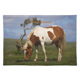 Loveable Wild Pony on Dartmoor Placemat