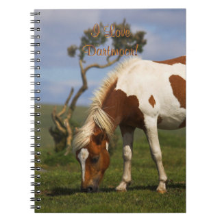Loveable Wild Pony on Dartmoor Spiral Notebooks