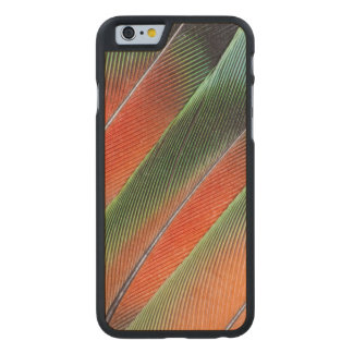 Lovebird Tail Feather Design Carved Maple iPhone 6 Case