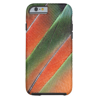 Lovebird Tail Feather Design Tough iPhone 6 Case