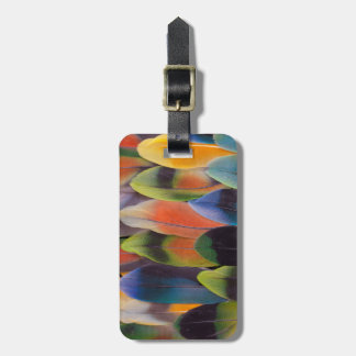 Lovebird Tail Feathers Abstract Luggage Tag