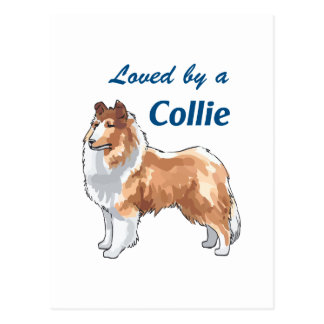 LOVED BY A COLLIE POSTCARD