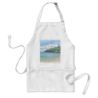 Lovely beach in the Seychelles in the Indian Ocean Standard Apron