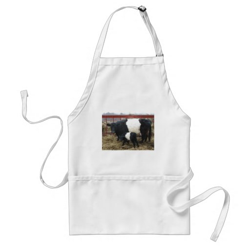 Lovely Beltie Cow and Calf Apron