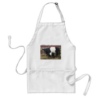 Lovely Beltie Cow and Calf Standard Apron
