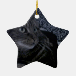 Lovely Cat Blue Ceramic Star Decoration