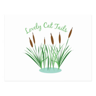 Lovely Cat Tails Postcard
