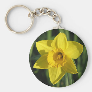 Lovely Daffodil Basic Round Button Key Ring