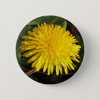 Lovely Dandelion 6 Cm Round Badge