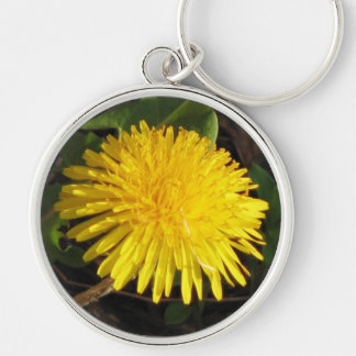 Lovely Dandelion Key Ring