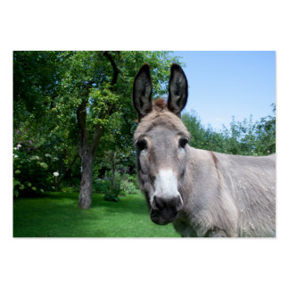 Lovely Donkey Portrait Pack Of Chubby Business Cards